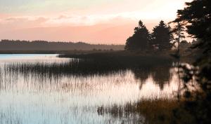 Codroy wetland at sunset. Photo by NCC.